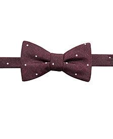 Ryan Seacrest Distinction Mens Umbria Dot Pre-Tied Bow Tie