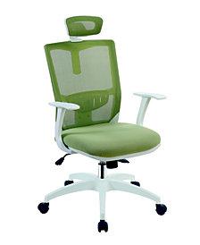 Ari Contemporary Mesh Office Chair