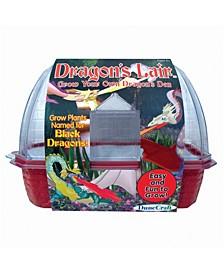 Dragon's Lair Windowsill Greenhouse