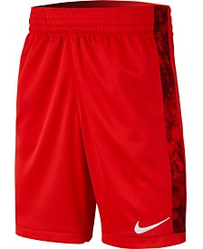 Nike Big Boys Printed Training Shorts