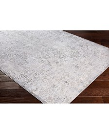 "Surya Soleil SOI-2310 Light Gray 18"" Square Swatch"