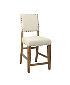Spier Transitional Counter Stool (Set of 2)