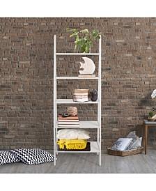 Shelf Ladder Bookcase