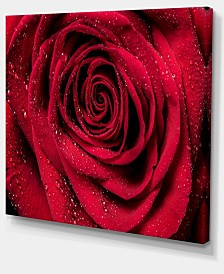 "Designart Red Rose Petals With Rain Droplets Floral Art Canvas Print - 40"" X 30"""