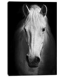 """Designart White Horse Black And White Animal Canvas Art Print - 30"""" X 40"""""""
