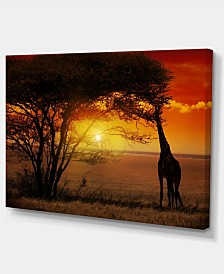 "Designart Typical African Sunset With Giraffe Oversized African Landscape Canvas Art - 32"" X 16"""