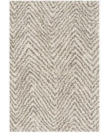 Safavieh Hudson Ivory and Gray 6' x 9' Area Rug