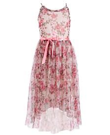 Pink & Violet Big Girls Floral-Print Mesh Dress