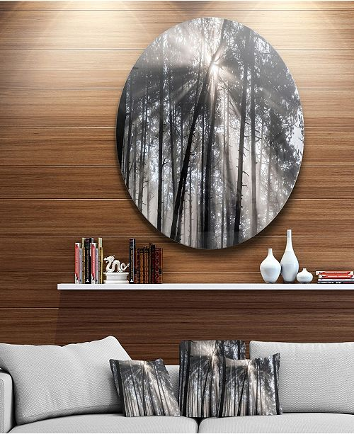 "Design Art Designart 'Sunbeams Through Black White Forest' Ultra Vibrant Forest Metal Circle Wall Art Print - 23"" x 23"""