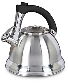 Mr. Coffee Collinsbrook 2.4 Quart Stainless Steel Whistling Tea Kettle