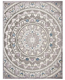 Safavieh Paradise Gray and Light Gray 8' x 10' Area Rug
