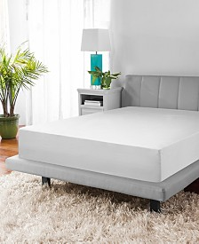CLOSEOUT! SensorPEDIC Back to Campus MicroShield Mattress Encasement with Bed Bug Protection Collection