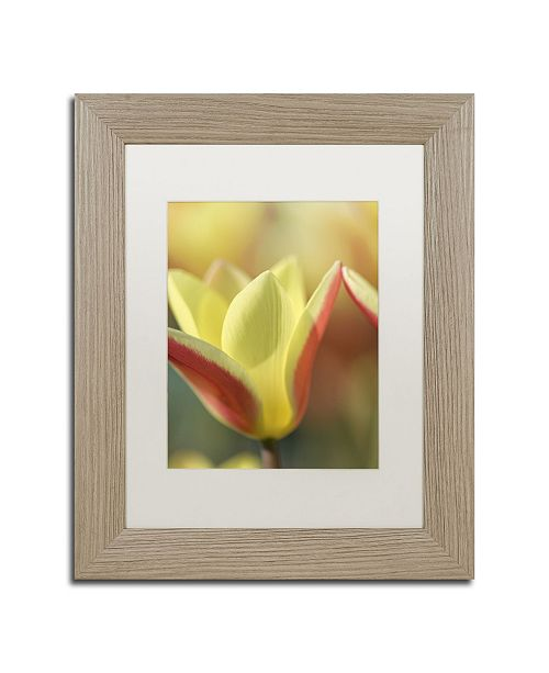 "Trademark Global Cora Niele 'Tulip Tinka' Matted Framed Art - 14"" x 11"" x 0.5"""