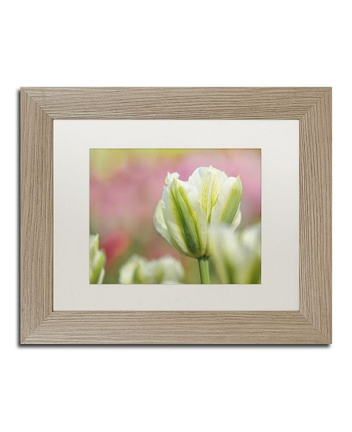 """Trademark Global Cora Niele 'White and Green Tulip' Matted Framed Art - 14"""" x 11"""" x 0.5"""""""