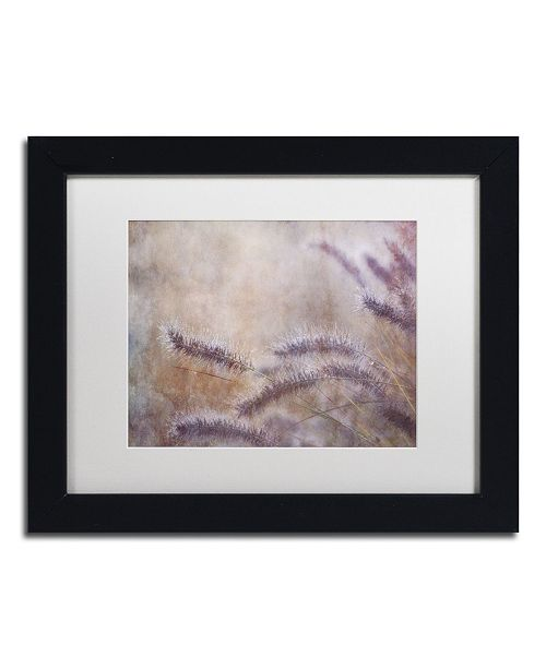 "Trademark Global Cora Niele 'Dew Fox Tail Grass' Matted Framed Art - 11"" x 14"" x 0.5"""