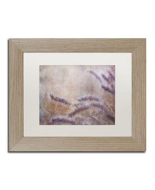 "Trademark Global Cora Niele 'Dew Fox Tail Grass' Matted Framed Art - 14"" x 11"" x 0.5"""