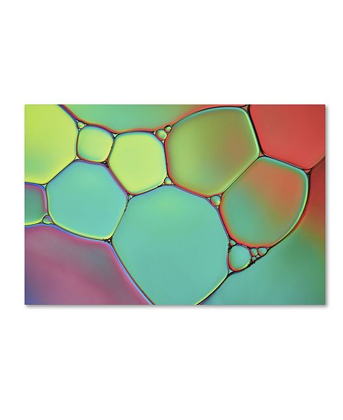 "Trademark Global Cora Niele 'Stained Glass III' Canvas Art - 19"" x 12"" x 2"""