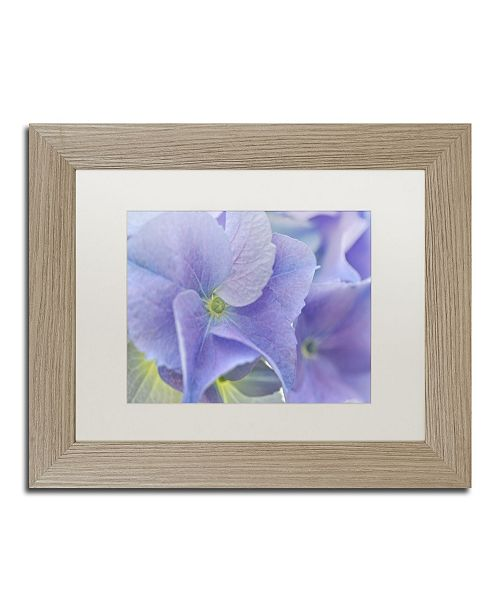 "Trademark Global Cora Niele 'Blue Hortensia' Matted Framed Art - 14"" x 11"" x 0.5"""