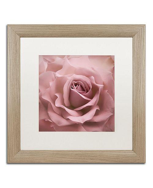 "Trademark Global Cora Niele 'Misty Rose Pink Rose' Matted Framed Art - 16"" x 16"" x 0.5"""