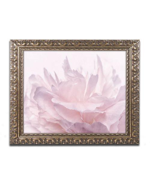 "Trademark Global Cora Niele 'Pink Peony Petals III' Ornate Framed Art - 20"" x 16"" x 0.5"""