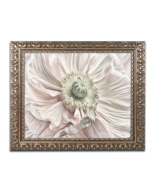 "Trademark Global Cora Niele 'Pink Poppy' Ornate Framed Art - 20"" x 16"" x 0.5"""