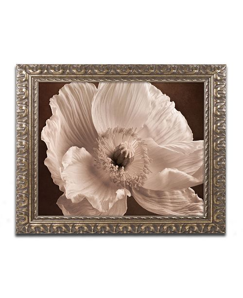 "Trademark Global Cora Niele 'Sepia Poppy I' Ornate Framed Art - 14"" x 11"" x 0.5"""