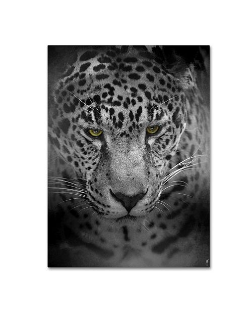 "Trademark Global Jai Johnson 'An Intense Stare' Canvas Art - 47"" x 35"" x 2"""