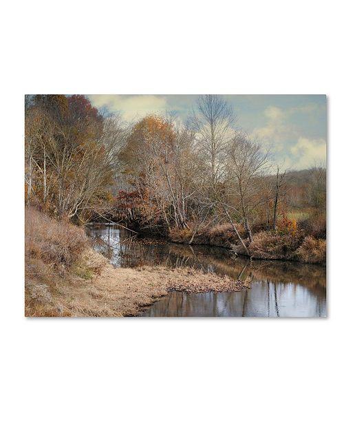 "Trademark Global Jai Johnson 'Natures Glory' Canvas Art - 47"" x 35"" x 2"""