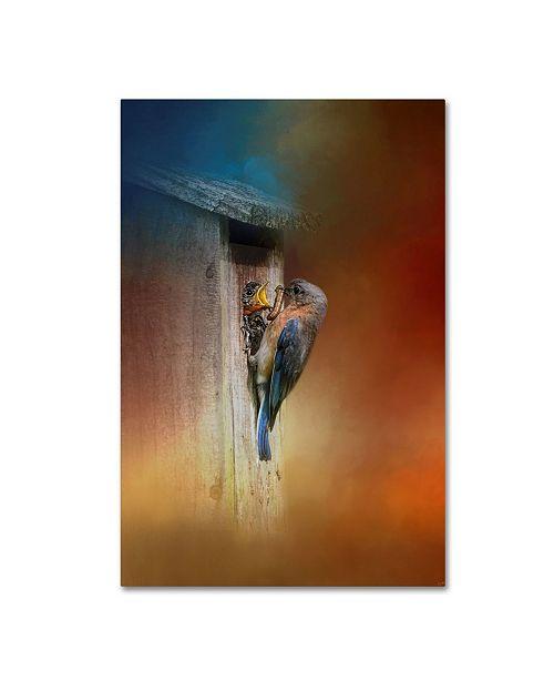"Trademark Global Jai Johnson 'Baby Bluebird Breakfast' Canvas Art - 24"" x 16"" x 2"""