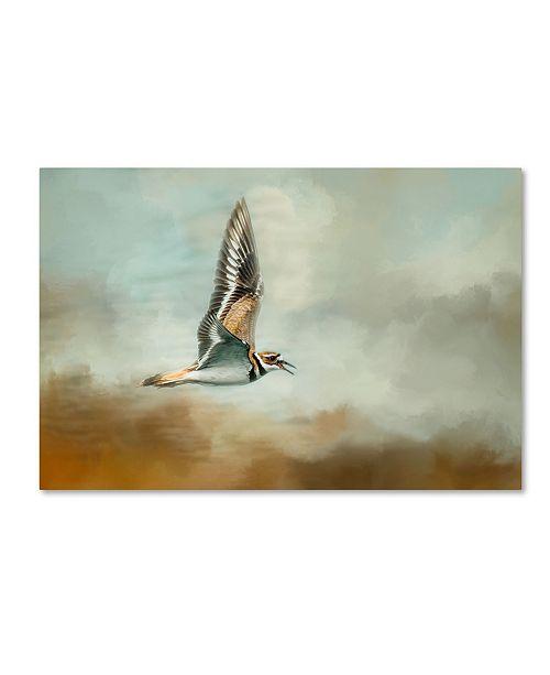 "Trademark Global Jai Johnson 'Flight Of The Killdeer' Canvas Art - 24"" x 16"" x 2"""