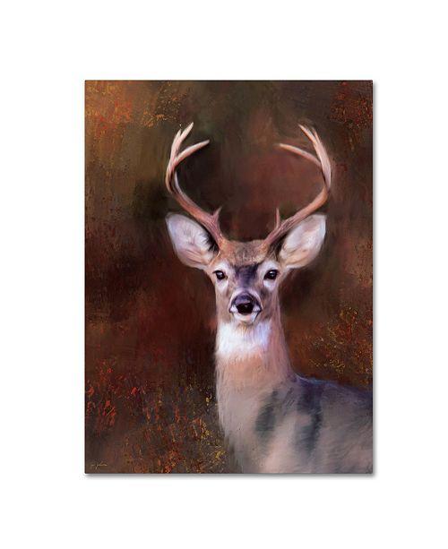 """Trademark Global Jai Johnson 'Eight Point In Autumn' Canvas Art - 32"""" x 24"""" x 2"""""""