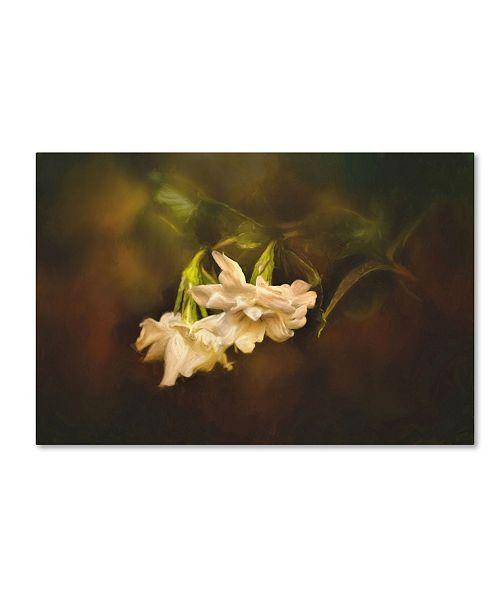 "Trademark Global Jai Johnson 'Gardenia In The Garden' Canvas Art - 19"" x 12"" x 2"""