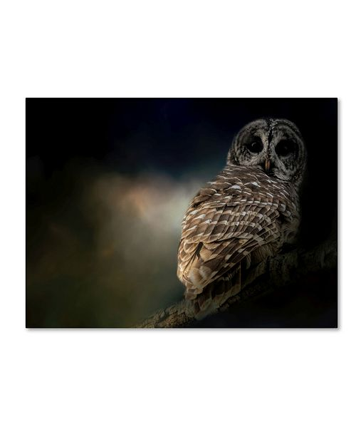 "Trademark Global Jai Johnson 'Barred Owl On A Winter Night' Canvas Art - 32"" x 24"" x 2"""