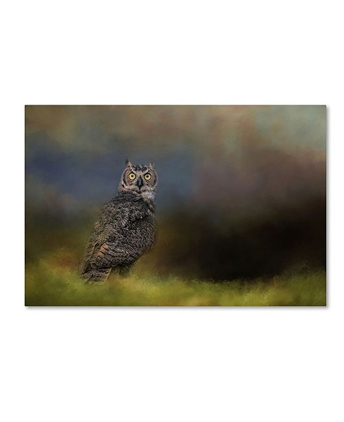 """Trademark Global Jai Johnson 'A Night With The Great Horned Owl 4' Canvas Art - 24"""" x 16"""" x 2"""""""