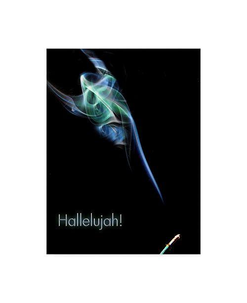 "Trademark Global Dana Brett Munach 'Hallelujah' Canvas Art - 19"" x 14"" x 2"""