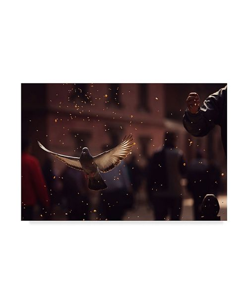 """Trademark Global Dan Mirica 'Pigeons In Patan Square' Canvas Art - 19"""" x 2"""" x 12"""""""