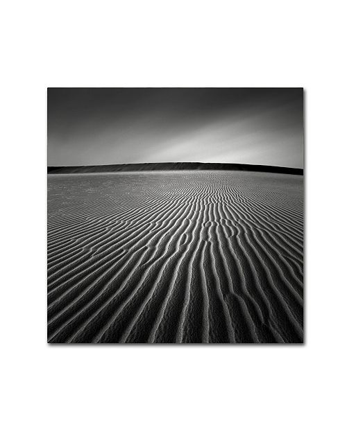 "Trademark Global Dave MacVicar 'Ripples' Canvas Art - 14"" x 14"" x 2"""
