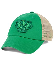 Top of the World Wisconsin Badgers Snog St. Paddys Adjustable Cap