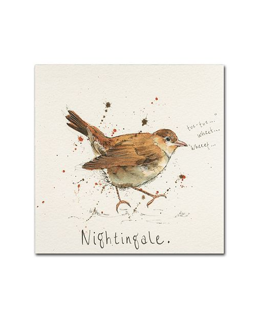 "Trademark Global Michelle Campbell 'Nightingale' Canvas Art - 35"" x 35"" x 2"""