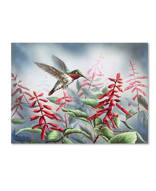 "Trademark Global Wanda Mumm 'Summer Hummingbird' Canvas Art - 32"" x 24"" x 2"""