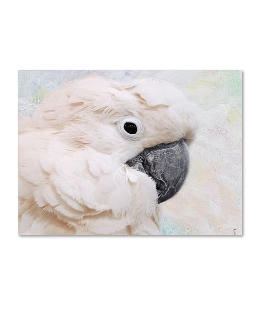 "Trademark Global Jai Johnson 'Umbrella Cockatoo Portrait' Canvas Art - 19"" x 14"" x 2"""