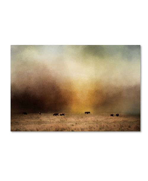 "Trademark Global Jai Johnson 'Where The Buffalo Roam' Canvas Art - 24"" x 16"" x 2"""