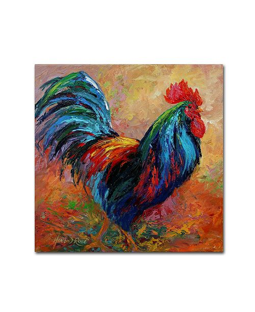 """Trademark Global Marion Rose 'Mr T Rooster' Canvas Art - 24"""" x 24"""" x 2"""""""