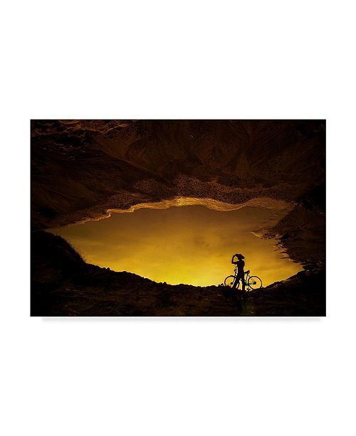 """Trademark Global Pink Sword 'The Nomad' Canvas Art - 47"""" x 2"""" x 30"""""""