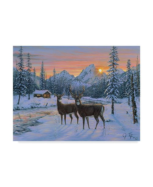 "Trademark Global Jeff Tift 'Whitetail' Canvas Art - 24"" x 18"" x 2"""