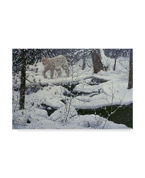 "Trademark Global Jeff Tift 'Canadian Lynx' Canvas Art - 24"" x 16"" x 2"""