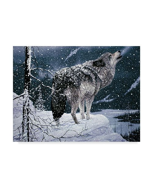 "Trademark Global Jeff Tift 'Lone Wolf' Canvas Art - 24"" x 18"" x 2"""