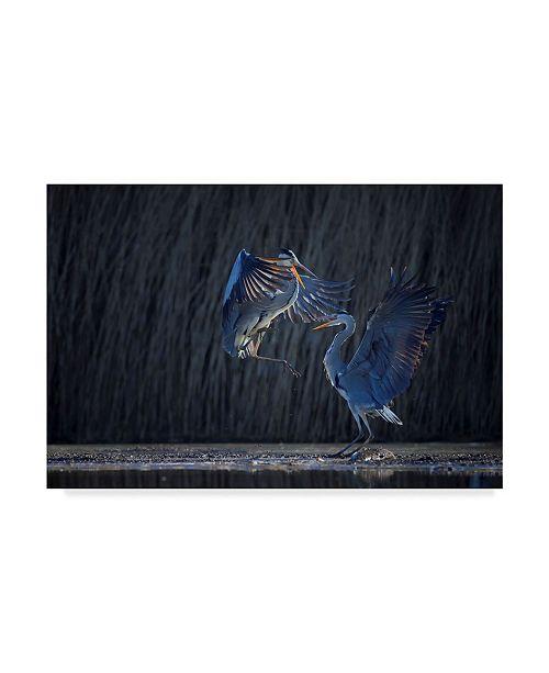 "Trademark Global Phillip Chang 'Grey Heron' Canvas Art - 19"" x 2"" x 12"""
