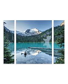 "Pierre Leclerc 'Natural Beautiful British Columbia' Multi Panel Art Set Large 3 Piece - 44"" x 34"" x 2"""