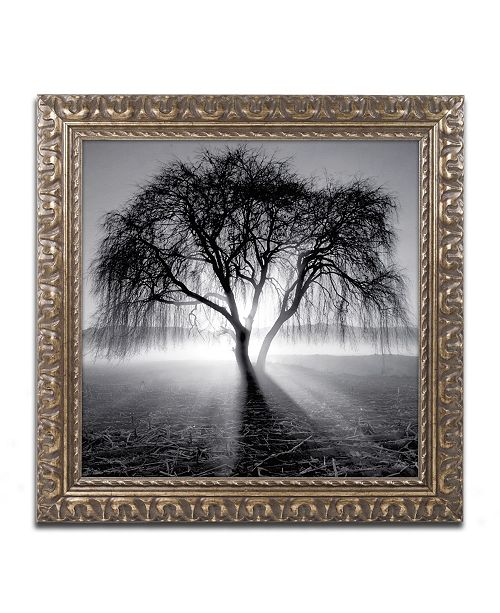 """Trademark Global Moises Levy 'Lightning Tree I' Ornate Framed Art - 11"""" x 11"""" x 0.5"""""""